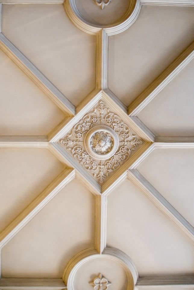 Architectural Ceiling Detail - Monticello